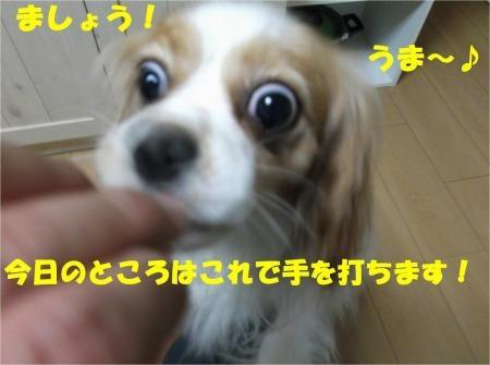 010_convert_20120801175141[1]