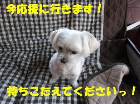 05_convert_20120802173616[1]