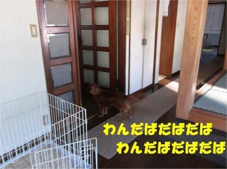 06_convert_20120802173645[1]