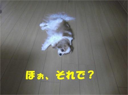 07_convert_20120802173713[1]