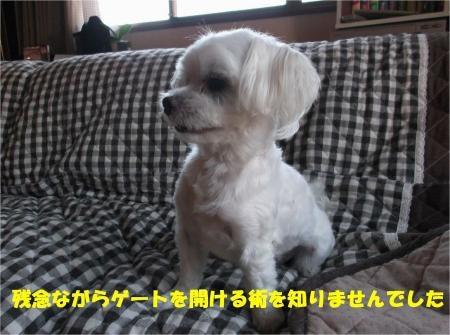 09_convert_20120802173814[1]