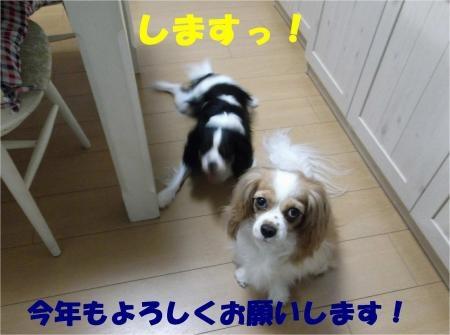 01_convert_20120803173303[1]