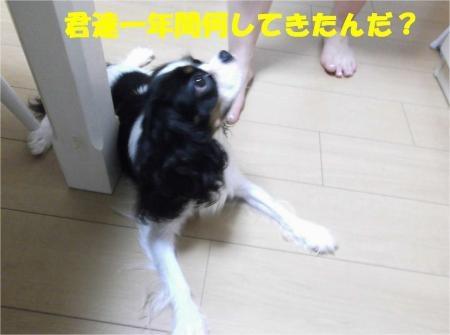 02_convert_20120803173331[1]