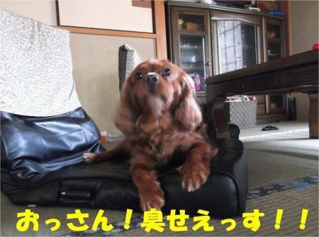 02_convert_20120806174106[1]