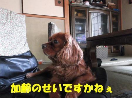 05_convert_20120806174239[1]