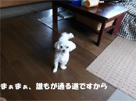 07_convert_20120806174342[1]