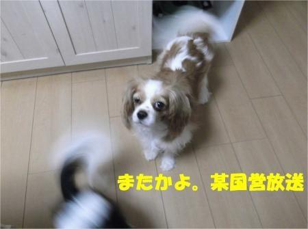 01_convert_20120807174239[1]