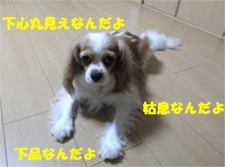 02_convert_20120807174307[1]