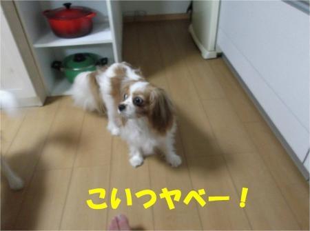 06_convert_20120807174514[1]