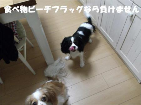 07_convert_20120807174542[1]