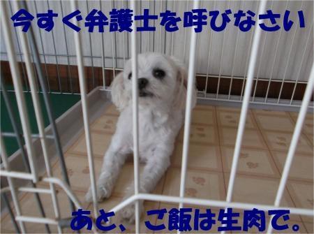 04_convert_20120808173911[1]