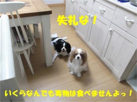 07_convert_20120808174040[1]