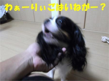 01_convert_20120809172148[1]