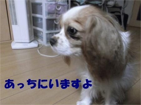02_convert_20120809172217[1]