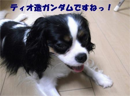 01_convert_20120810155442[1]