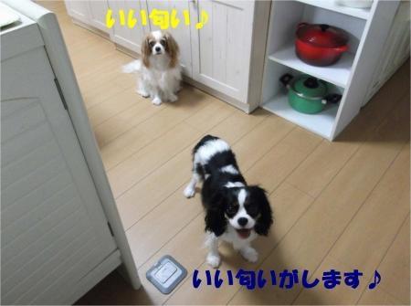 02_convert_20120810155510[1]