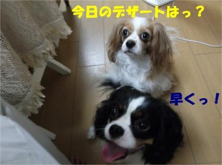 03_convert_20120810155541[1]