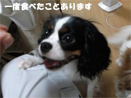 05_convert_20120810155635[1]