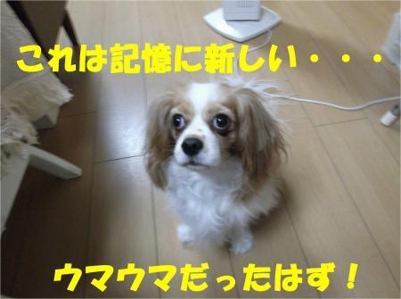 06_convert_20120810155702[1]