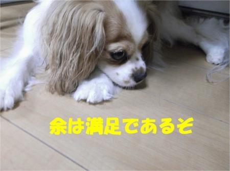 08_convert_20120810155756[1]