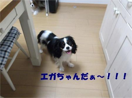 010_convert_20120810155851[1]