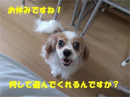 03_convert_20120820181018[1]