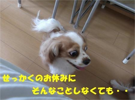 04_convert_20120820181050[1]