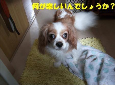 07_convert_20120820181226[1]
