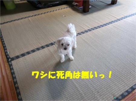 01_convert_20120821180129[1]