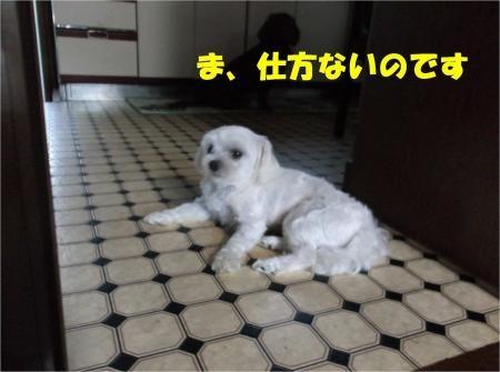 04_convert_20120821180309[1]
