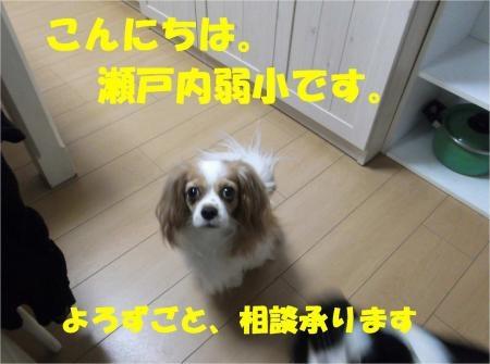 01_convert_20120823173558[1]