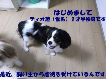 02_convert_20120823173634[1]