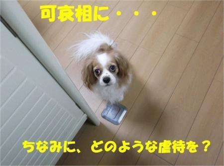 03_convert_20120823173706[1]