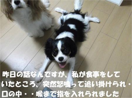 04_convert_20120823173821[1]