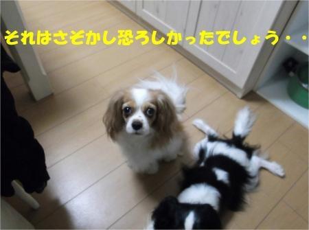 05_convert_20120823173847[1]