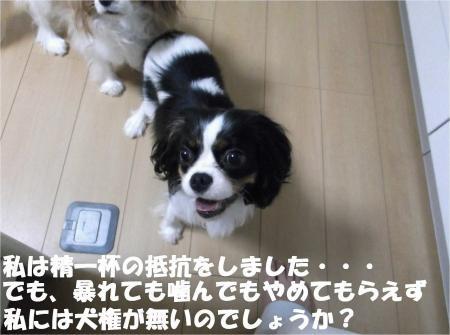 06_convert_20120823174013[1]