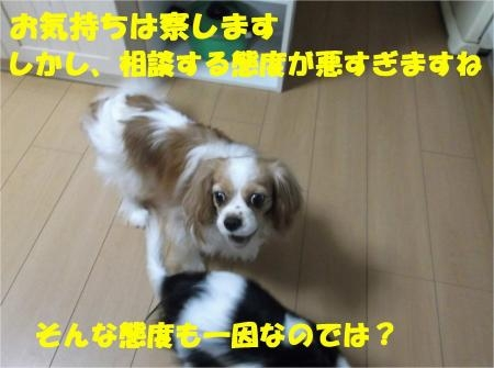 07_convert_20120823174049[1]