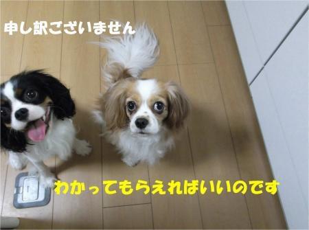08_convert_20120823174124[1]