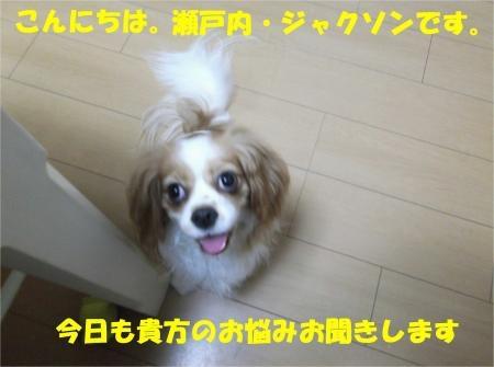 01_convert_20120824181241[1]