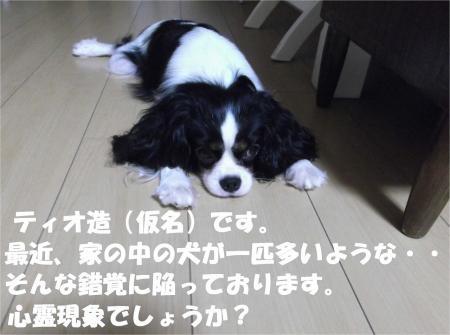 02_convert_20120824181310[1]