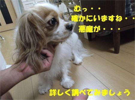 03_convert_20120824181341[1]