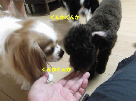 05_convert_20120824181941[1]
