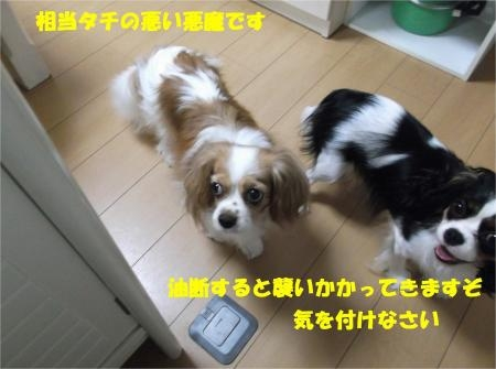 07_convert_20120824182037[1]