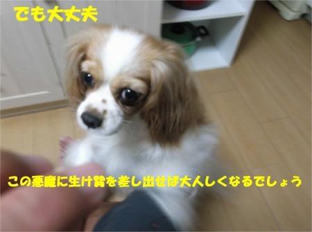 09_convert_20120824182136[1]