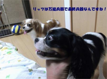 014_convert_20120824182358[1]