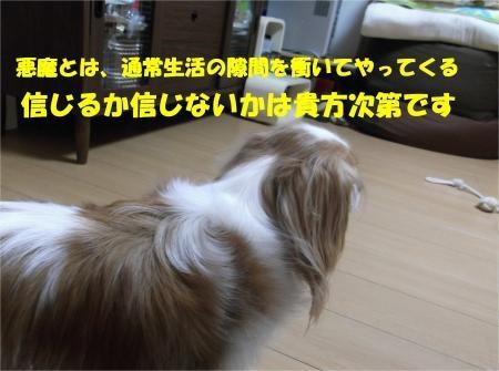 015_convert_20120824182428[1]