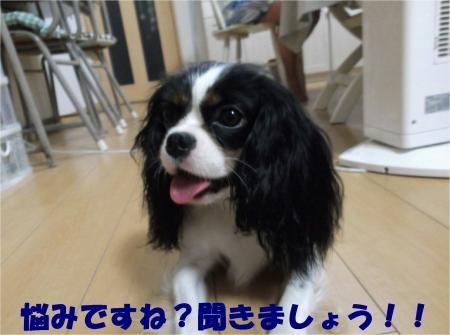 01_convert_20120829183231[1]