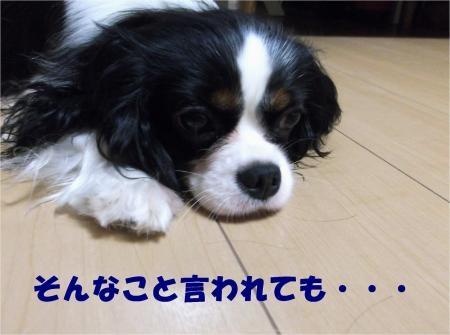 02_convert_20120829183359[1]