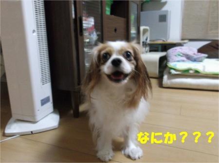 04_convert_20120829183536[1]