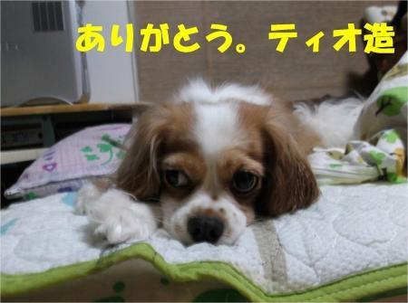 07_convert_20120829183701[1]